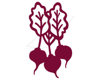 how to use beets.io