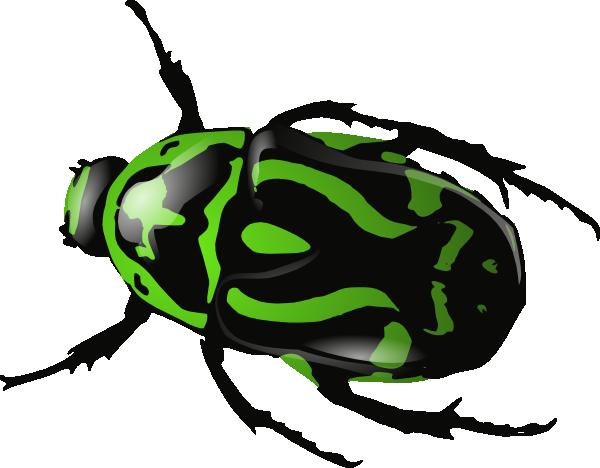 ... -vector-green-beetle-clip-art_115576_Green_Beetle_clip_art_hight.png