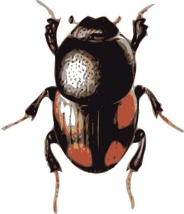 Beetle Clipart | Clipart Panda - Free Clipart Images