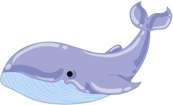 blue whale clip art clipart panda free clipart images rh clipartpanda com blue whale clipart free big blue whale clipart