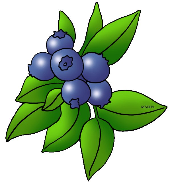 berry clipart clipart panda free clipart images
