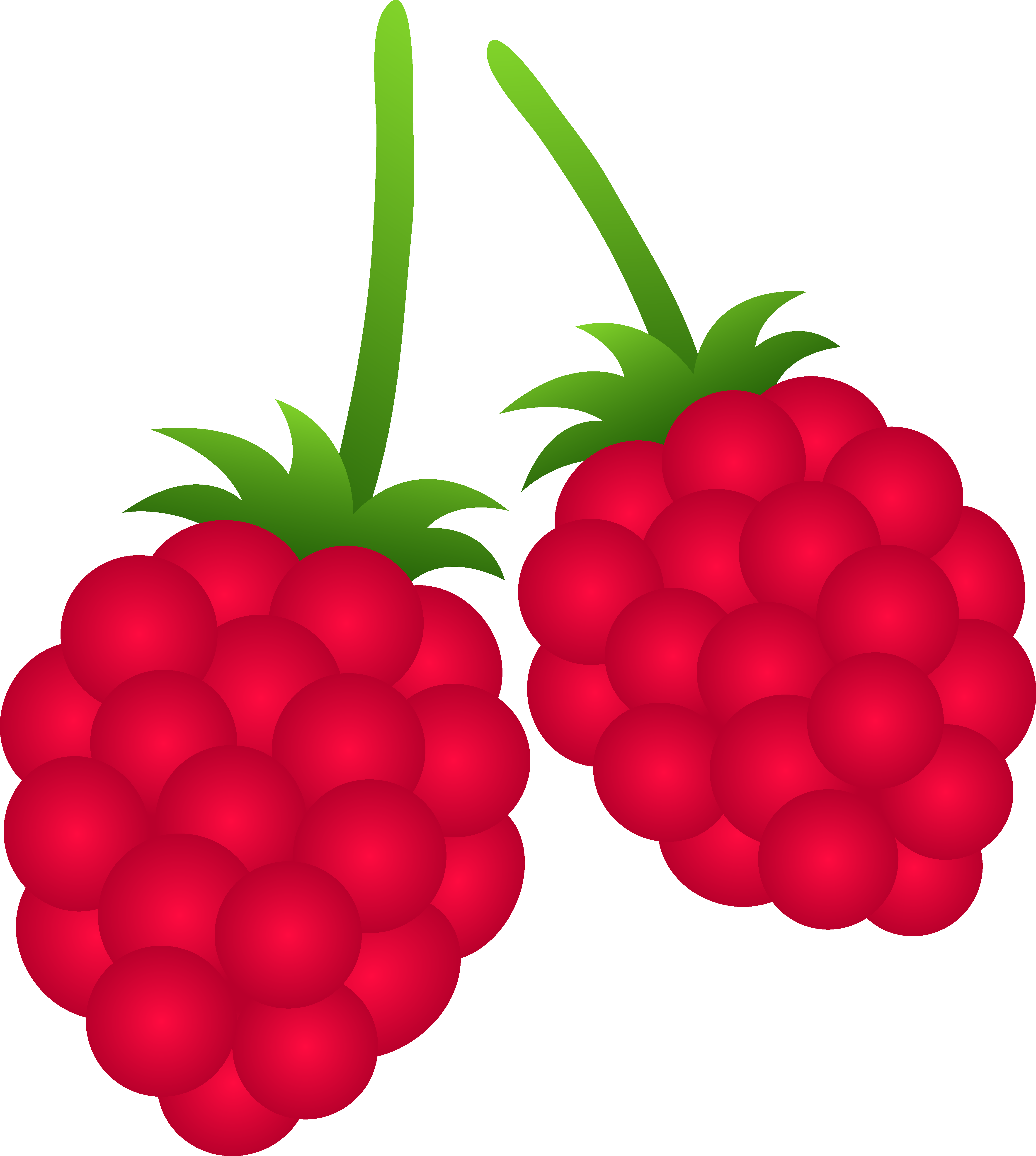 berry 20clipart clipart panda free clipart images