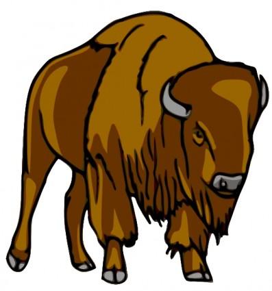 bison clip art clipart panda free clipart images rh clipartpanda com bison head clipart bichon clipart