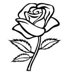 Rose Black And White