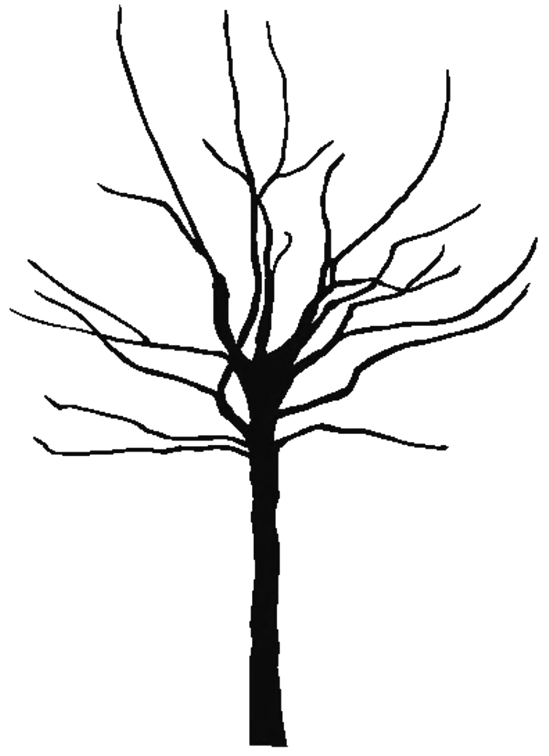 Clip Art Bare Tree Clip Art black and white bare tree clipart panda free clipart