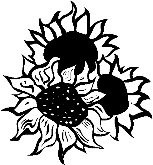 Black And White Sunflower Clipart | Clipart Panda - Free ...