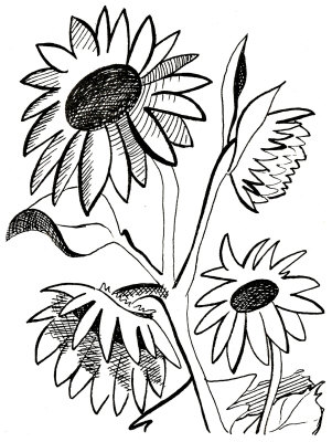Black And White Sunflower Clip Art | Clipart Panda - Free ...
