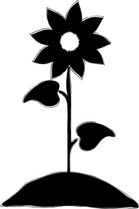 black%20and%20white%20sunflower%20clipart