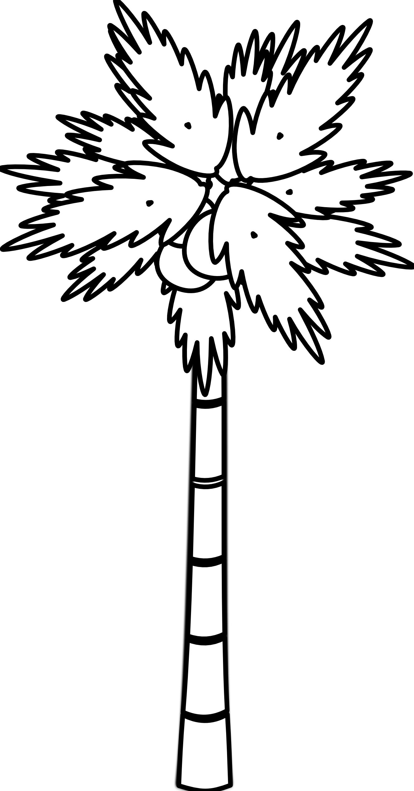 Line Drawing Palm Tree : Palm tree clip art black and white clipart panda free