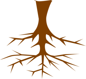 Plant With Roots Clipart Black And White