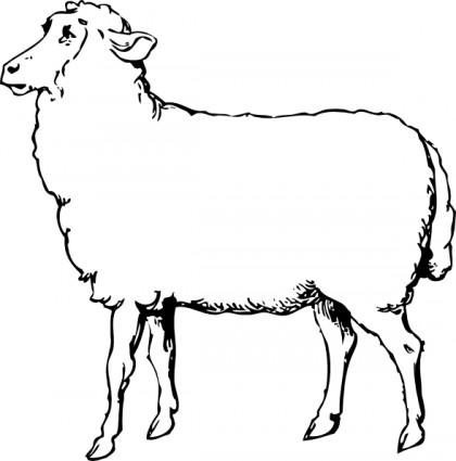 sheep clipart black and white clipart panda free clipart images rh clipartpanda com Ram Head Clip Art Football Rams Clip Art