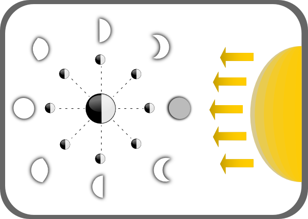 Diagram Of Moon Phases clip