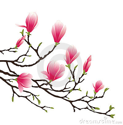 magnolia flower clip art clipart panda free clipart images rh clipartpanda com magnolia wreath clipart magnolia clip art free