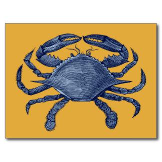 blue%20crab%20drawing