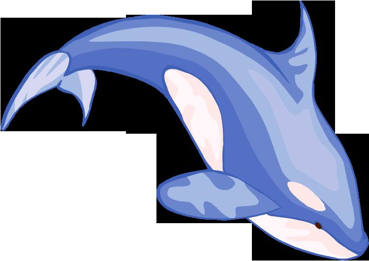 Blue Whale Clip Art   Clipart Panda - Free Clipart Images