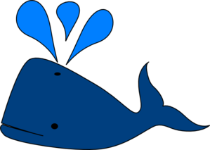 blue%20whale%20pictures