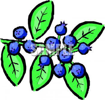 Blueberry%20Clip%20Art