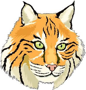 bobcat clip art clipart panda free clipart images rh clipartpanda com bobcat clipart app bobcat clipart free