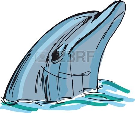 bottlenose dolphin drawing clipart panda free clipart bottlenose dolphin clip art dolphin swimming Dolphin Ocean Clip Art