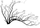 branch%20clipart
