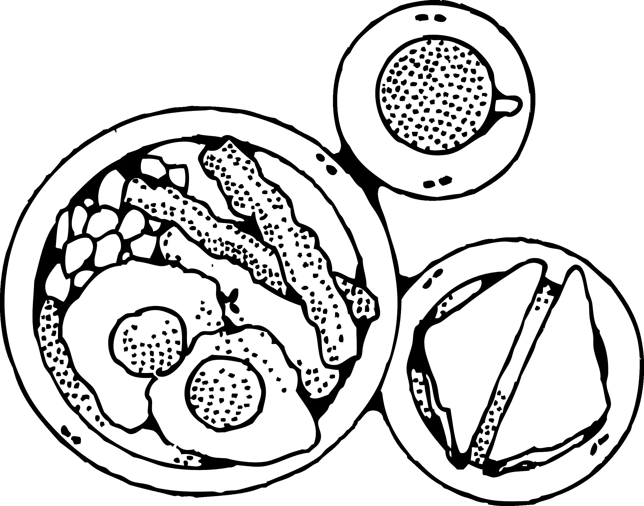 Ham Clipart Black And White