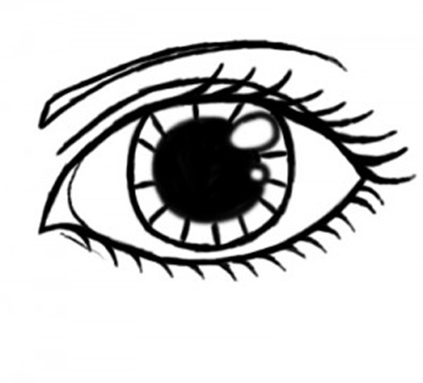 Line Art Eye : Brown eye drawing clipart panda free images