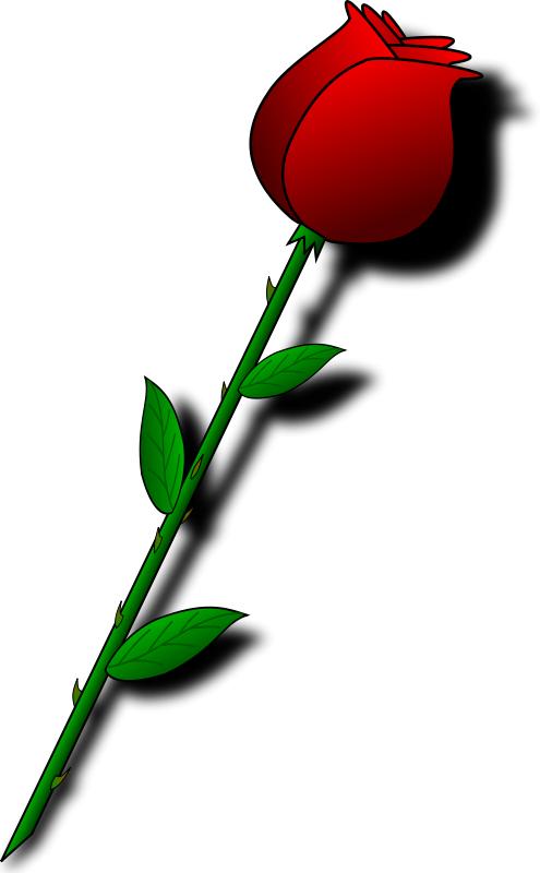rose clip art png image information