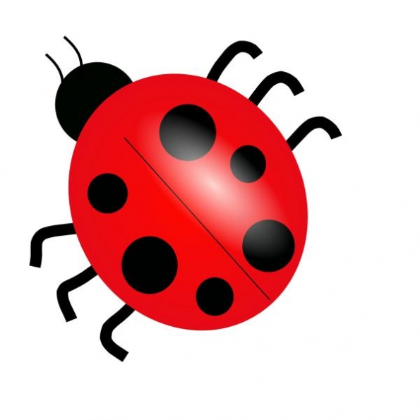 bug 20clip 20art clipart panda free clipart images free ladybug clipart hanslodge free ladybug clipart black and white