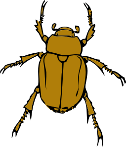 bug clip art free clipart panda free clipart images rh clipartpanda com insect clipart free black and white