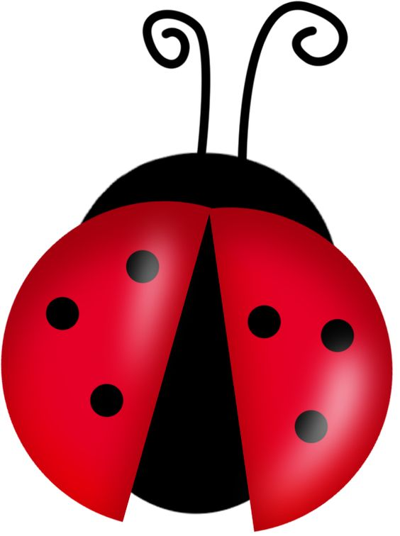 Bug Clip Art Black And White Free | Clipart Panda - Free Clipart ...