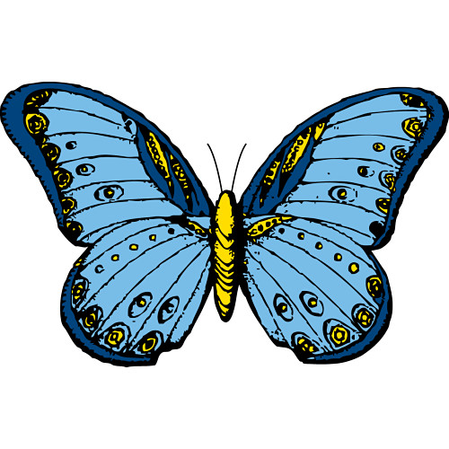 butterfly clipart clipart panda free clipart images rh clipartpanda com clipart butterfly and daisy clipart butterfly good morning