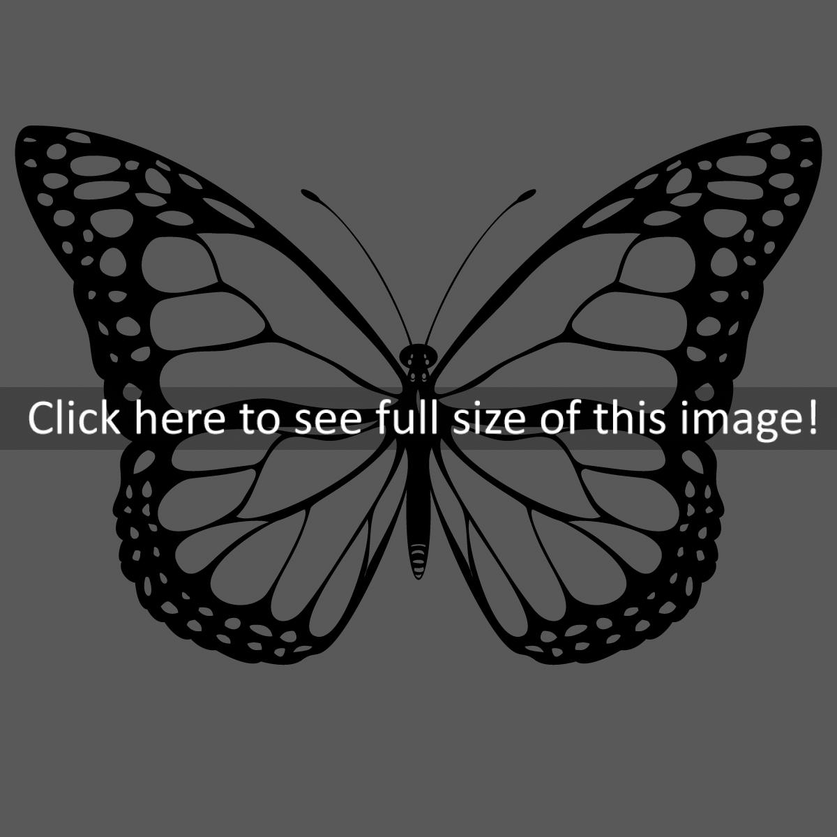 butterfly%20clipart%20black%20and%20white
