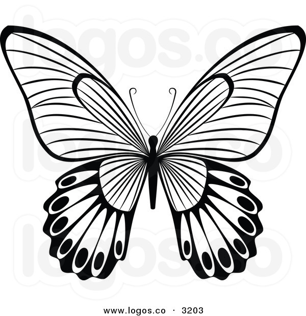Butterfly Clipart Black And White | Clipart Panda - Free Clipart ...