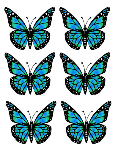 5 butterfly image clip art clipart panda free clipart images rh clipartpanda com butterfly clipart images free butterfly clipart images black and white