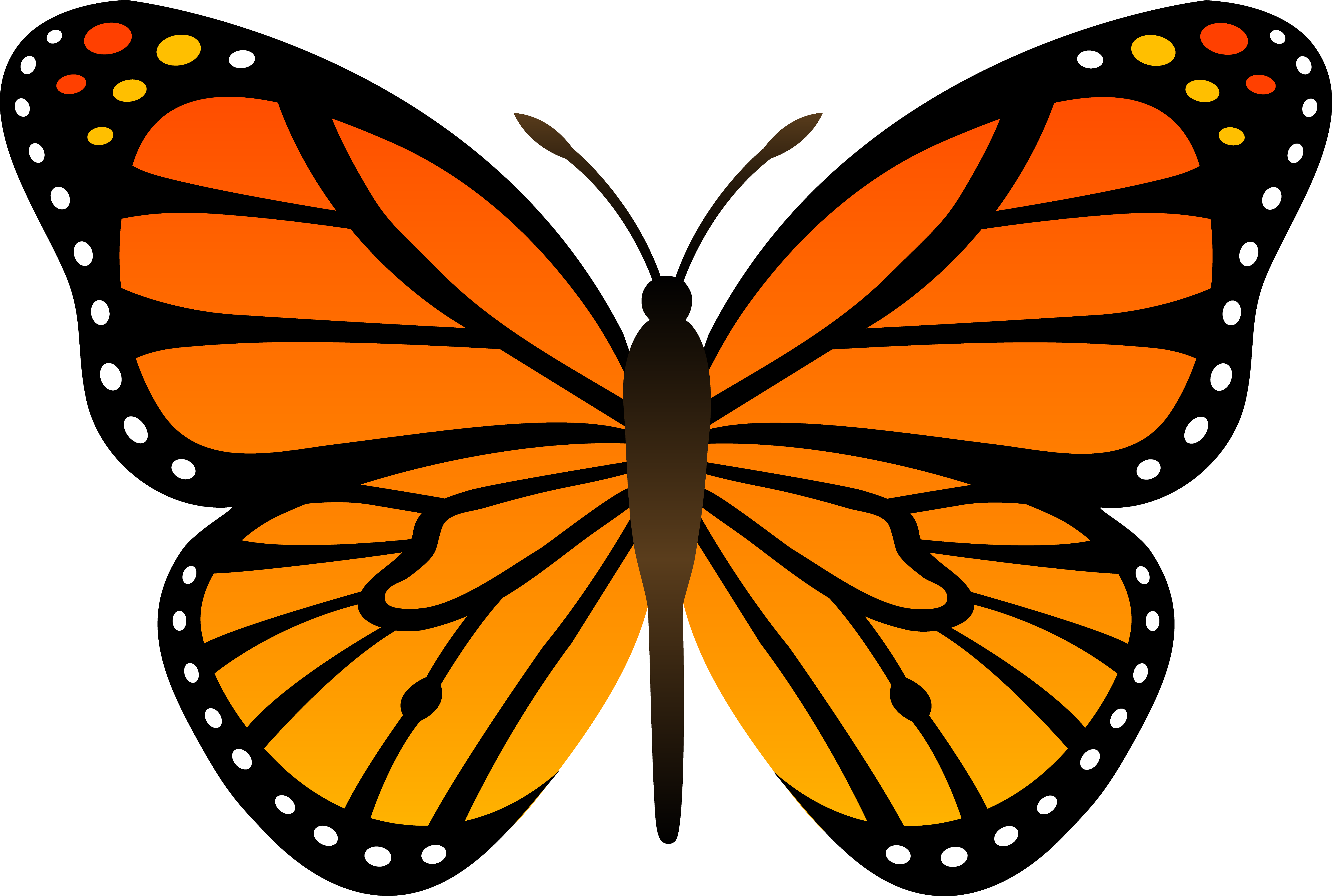 butterfly%20clipart%20
