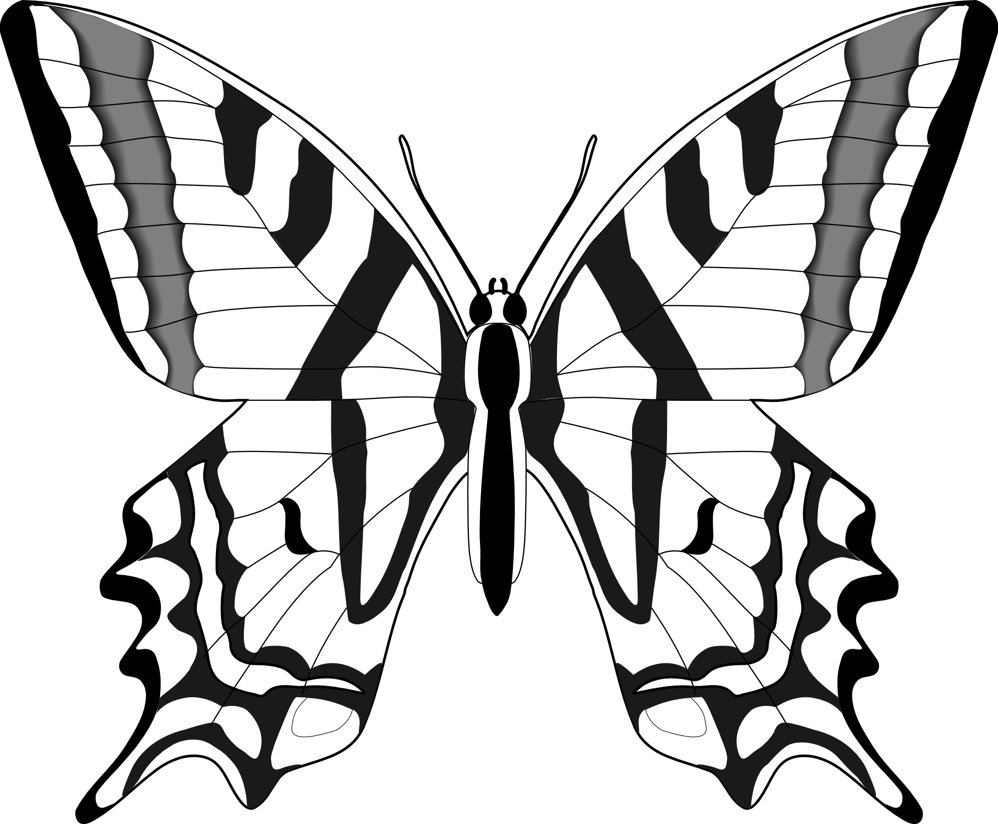 butterfly%20outline%20clipart