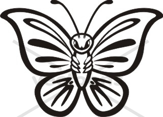 butterfly outline clipart clipart panda free clipart images rh clipartpanda com butterfly template clipart butterfly outline clipart black and white