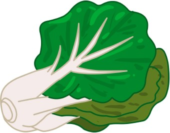 Cabbage 20clipart on Green Tree Clip Art