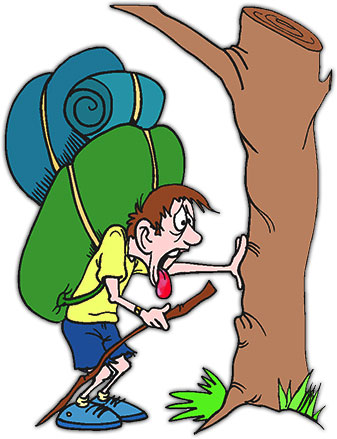 Go Back > Gallery For > Funny Camping Clipart