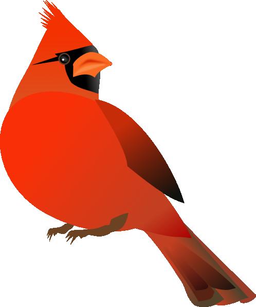 16 free cardinal clipart.