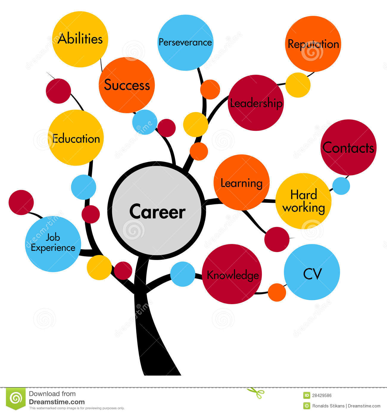 required experience for career option