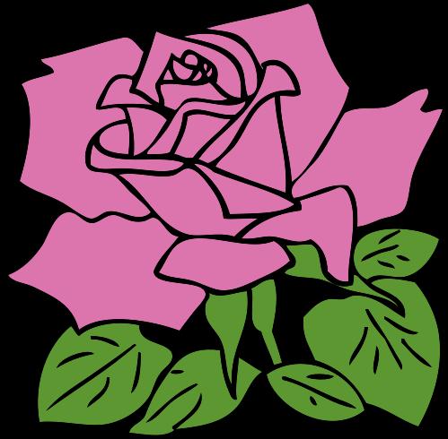 Carnation%20Flower%20Clip%20Art