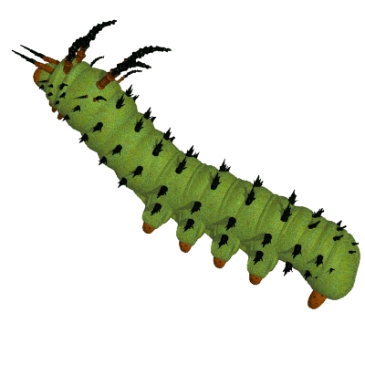 Very Hungry Caterpillar Clipart | Clipart Panda - Free Clipart Images