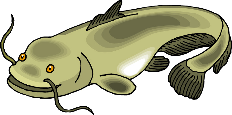 catfish 20clipart clipart panda free clipart images rh clipartpanda com catfish clip art and designs for sale catfish clipart black and white