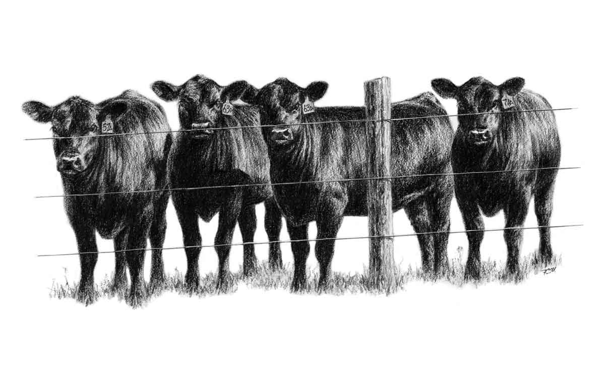 cattle clip art free clipart panda free clipart images