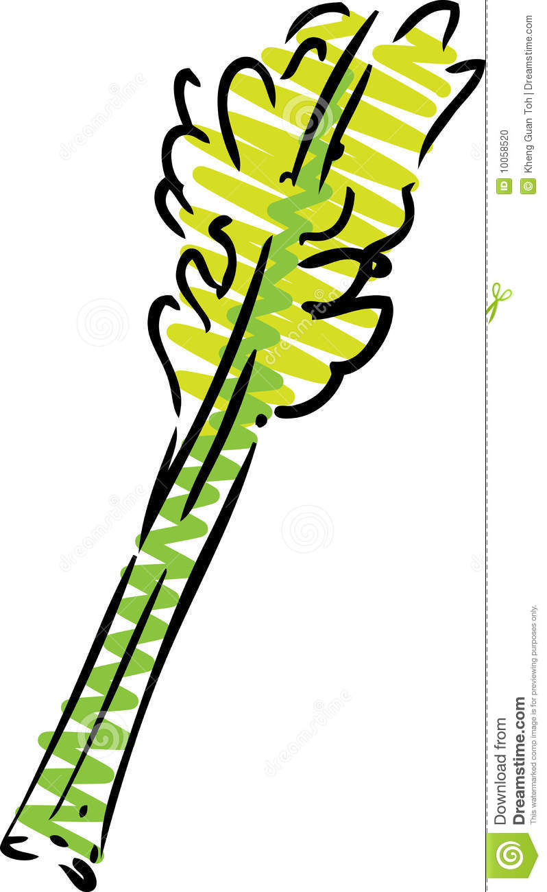 Clip Art Celery - Viewing Gallery