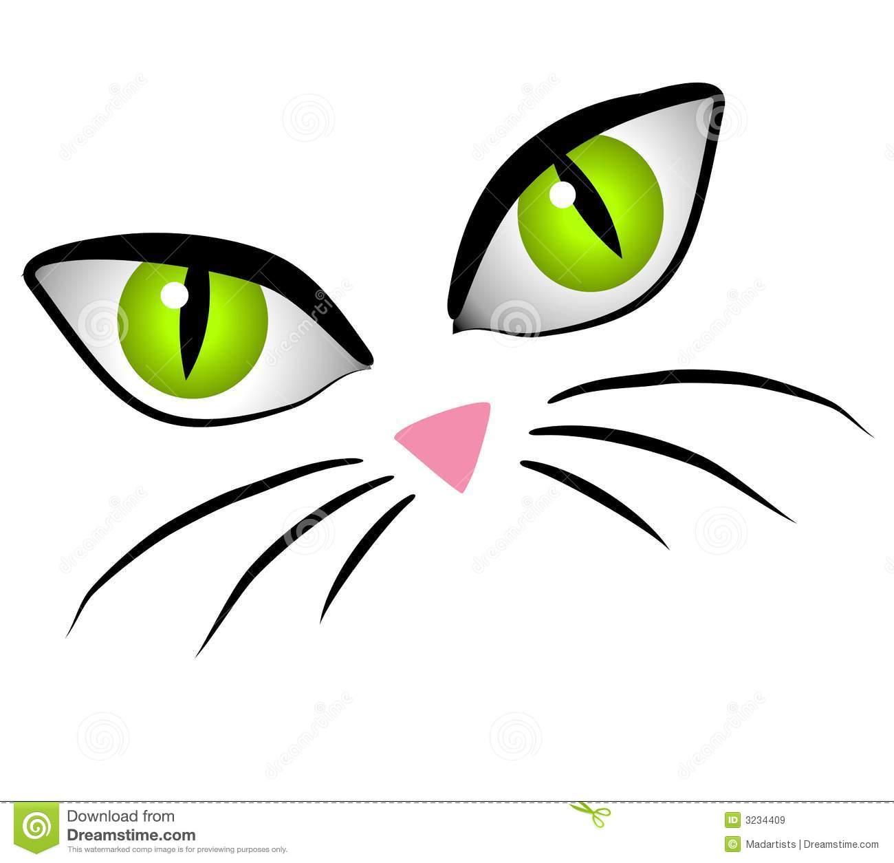 cats night vision
