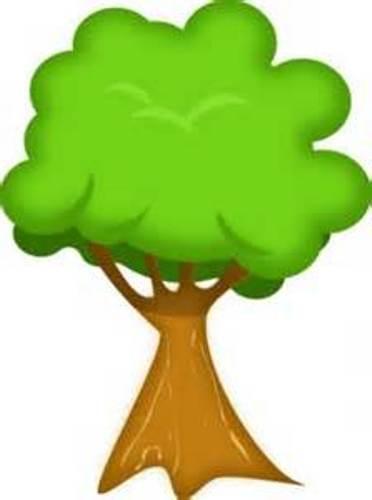 tree nut clip art - photo #4