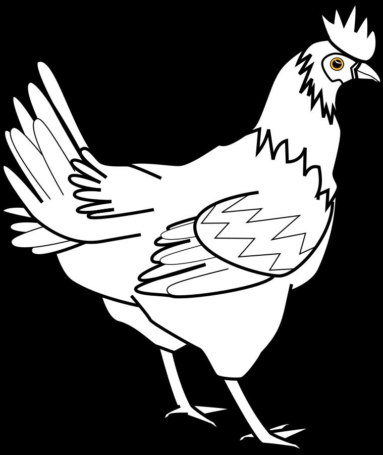Single Line Vector Art : Chicken clipart black and white panda free