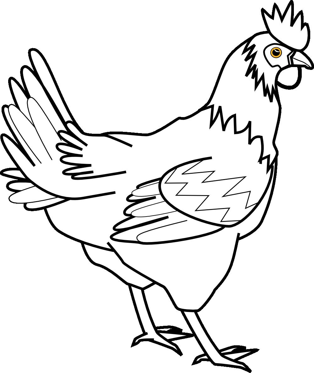 Line Art Black And White : Chicken clipart black and white panda free